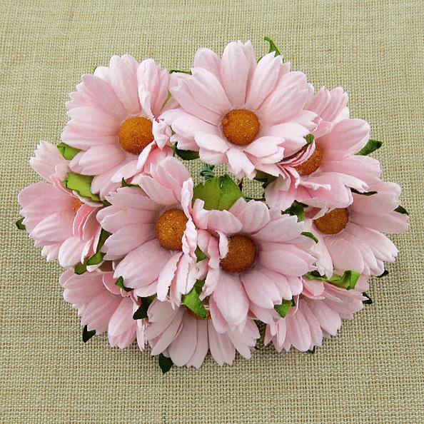 Mulberry Flowers - Chrysanthemum - Pink