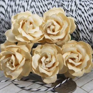 Mulberry Flowers - Wild Rose 30mm - Cream