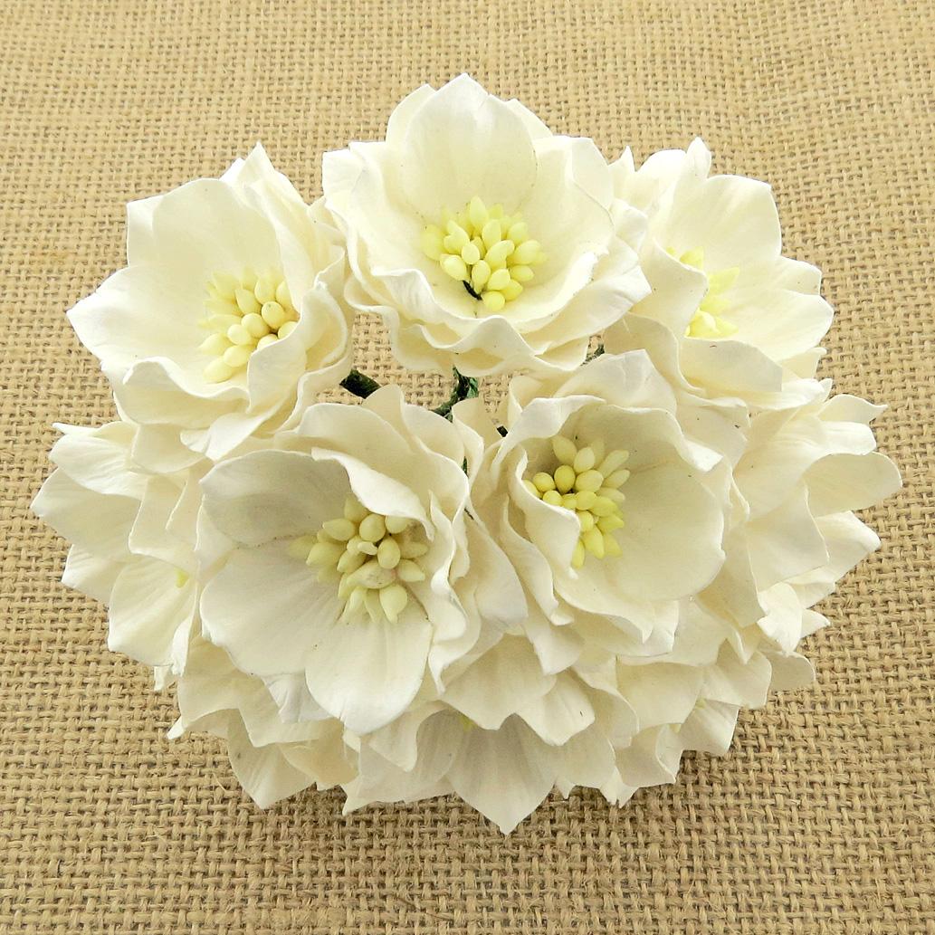 Mulberry Flowers - Lotus Flower