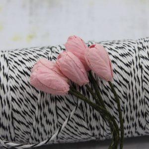 Tulip - Pale Pink