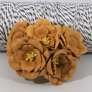 Magnolia - Sudan
