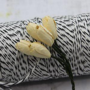 Tulip - Yellow