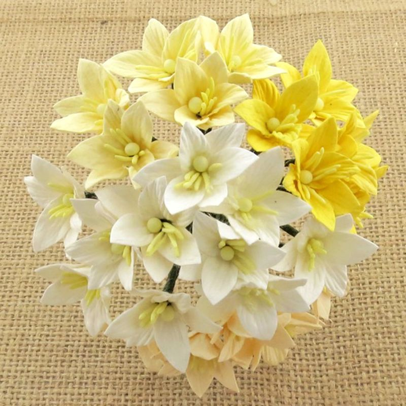 Mulberry Flowers - Lily flower  Mixed White/Crm/Yellow