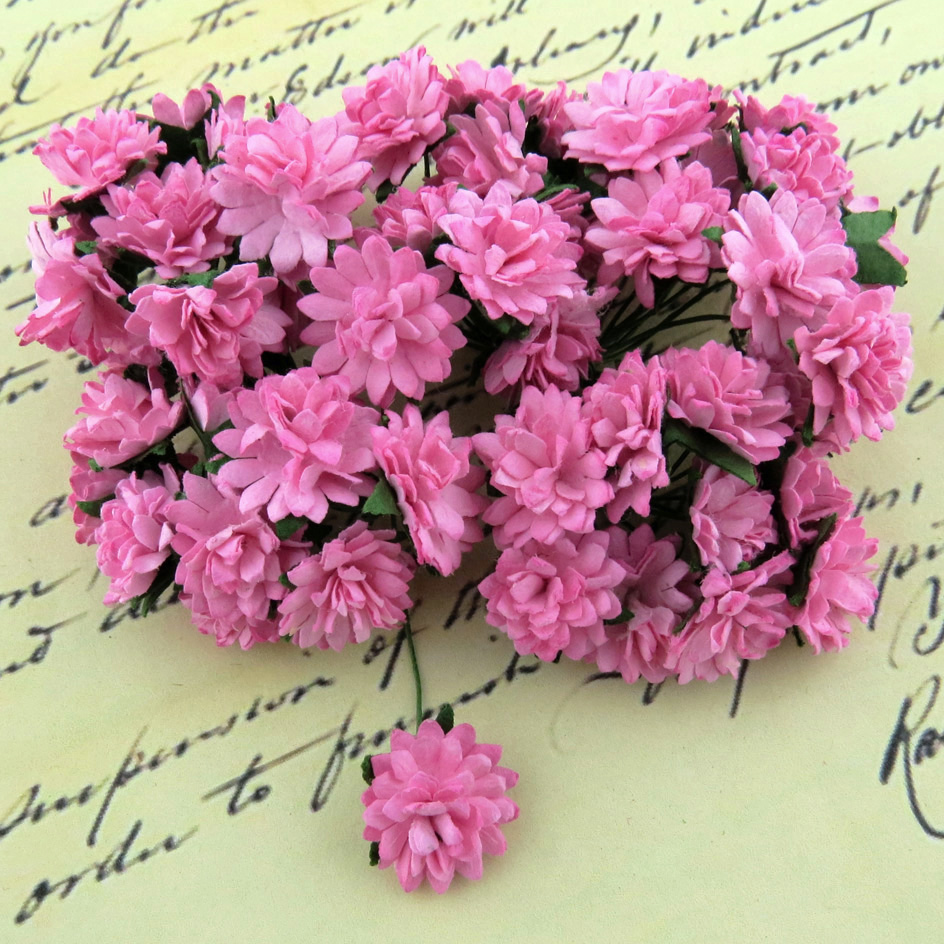 Mulberry Flowers - Aster Daisy Pink