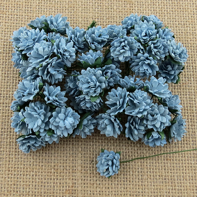 Mulberry Flowers - Aster Daisy Baby Blue