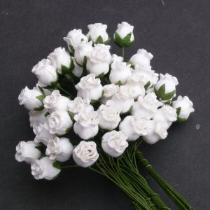 Mulberry Flowers - Hip Rosebuds - White