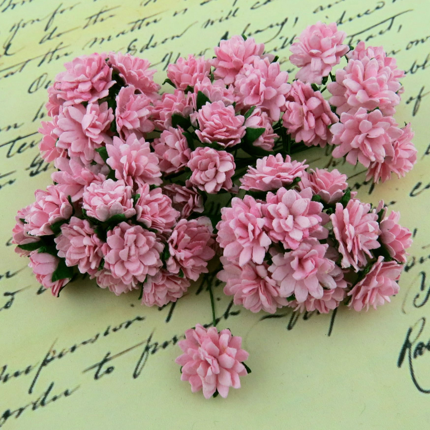 Mulberry Flowers - Aster Daisy - Baby Pink