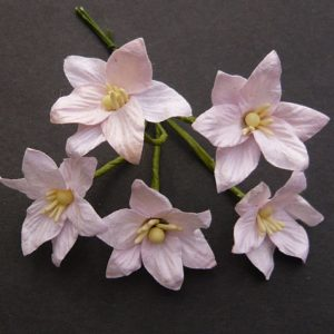 Mulberry Flowers - Lily flower - Pink