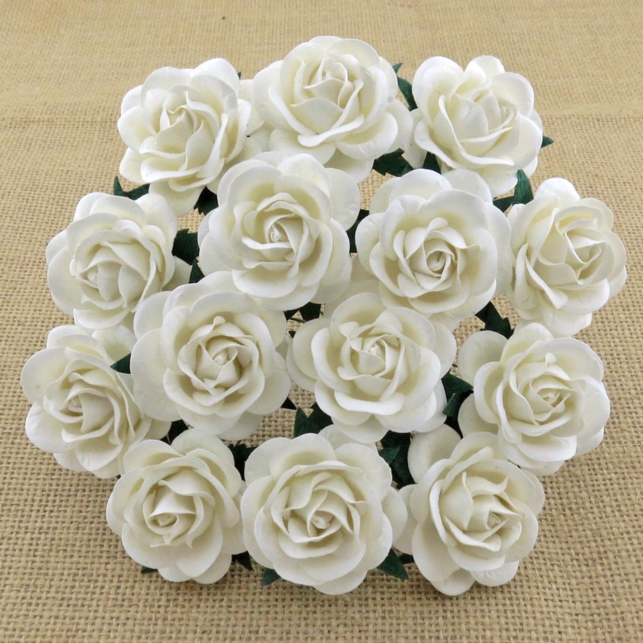 Mulberry Flowers - Trellis Rose 35mm - White